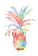 Colorful Pineapple Clean