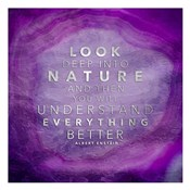 Look Nature