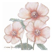 Pink Poppies 1