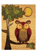 Texture Owls 01