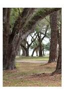 Serenity Park