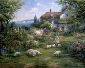 Home Sheep Home