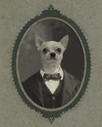Dog Series #1