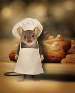Mice Series #6.5