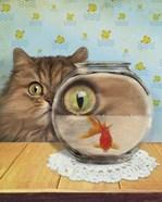 Cat Series #3