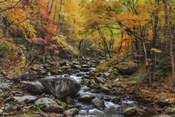 Tremont Stream Watercolor