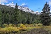 Yellowstone Sbc Landscape