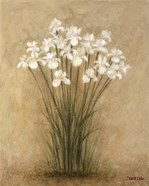 Floral F