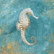 Treasures from the Sea I Aqua