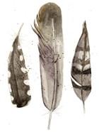 Earthtone Feathers II