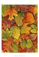 Fallen Leaves II