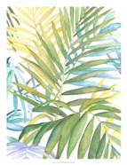 Tropical Pattern I