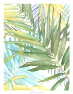Tropical Pattern II