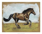Equestrian Studies I