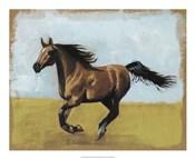 Equestrian Studies II