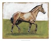 Equestrian Studies III
