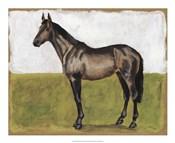 Equestrian Studies IV
