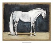Equestrian Studies V