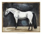 Equestrian Studies VI