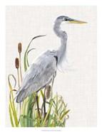 Waterbirds & Cattails I