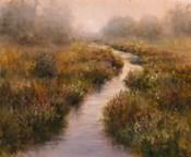 Misted Brook, Arlington