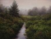 Meadow Brook, Arlington