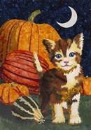 Calico Kitten & Pumpkins