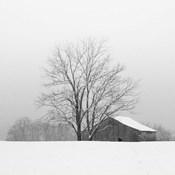 Townsend Winter I