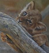 Play Lion Cub