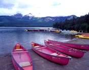 Four Pink Boats, Canadian Rockies 06