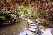 Stepping Stones at Butchart Gardens #2, Victoria, B.C. 09