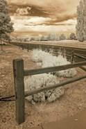 Fence & Road, Albuquerque, New Mexico 06
