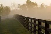 Morning Mist & Fence, Kentucky 08