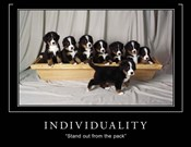 Individuality Motivational