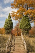 Wooden Steps In Autumn, Marquette, Michigan 12