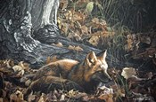 Autumn Leaves- Red Fox