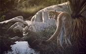 Creekside Cougar