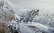 Winter's Fury Mountain Goat