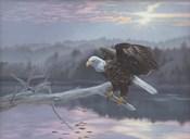 The Huron Eagle