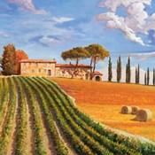 Colline Toscane (Detail)