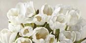 Composizione in Bianco