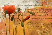 Poppies Composition I