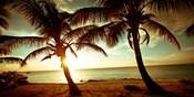 Bimini Sunset II