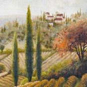 Tuscany Vineyard II