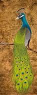 Peacocks I