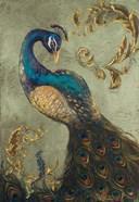Peacock on Sage II