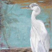 Tropic Heron II