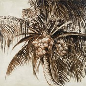 Coconut Palm I