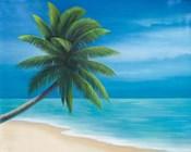 Palm Beach I
