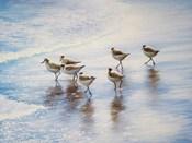 Sand Dancers